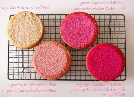 Quantité de colorant pour le pink ombre cake
