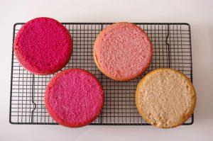 Gâteaux colorés pink ombre cake