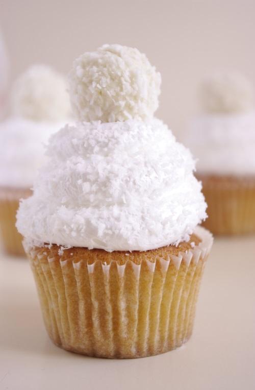 cupcakes-tout-coco