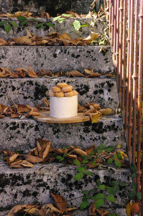 Gâteau d'automne à la cannelle
