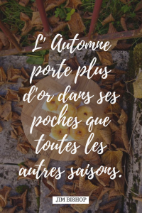 Joli proverbe sur l'automne